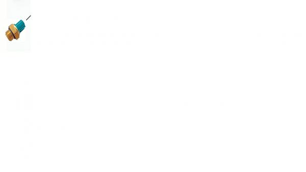 Kuehlerluefterschalter_STELS_Guepard_650_850.png